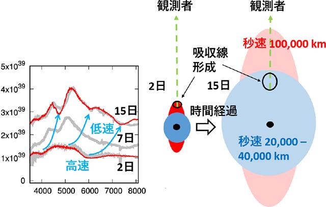 SN 2017iukのスペクトル進化と現象の説明図
