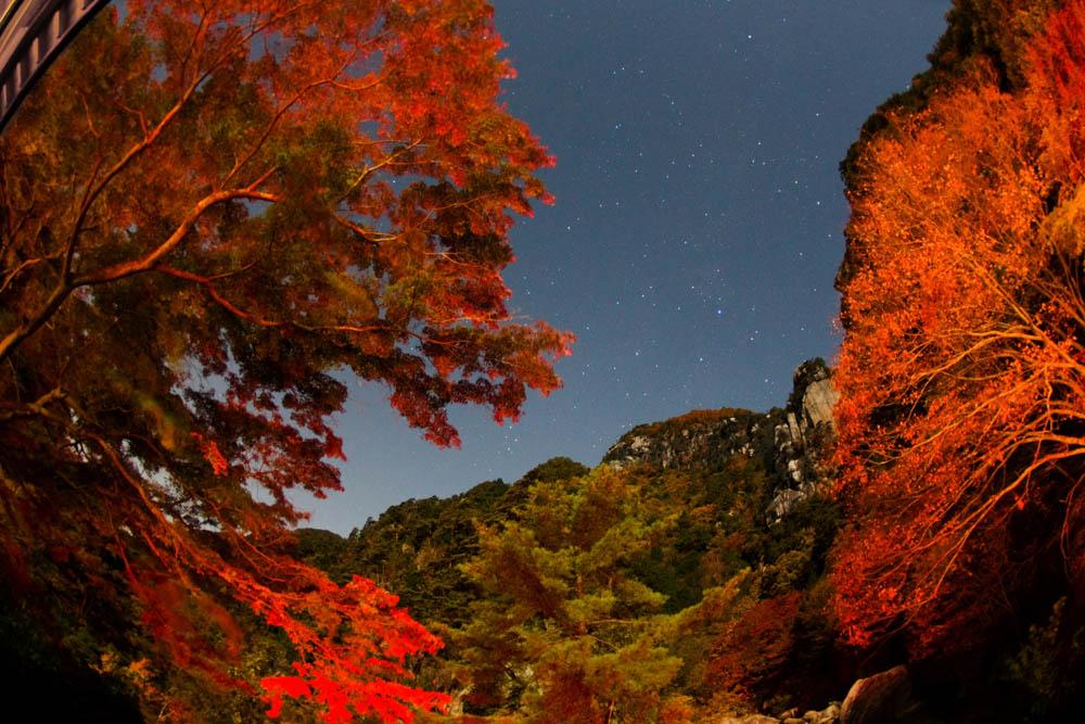 星夜の紅葉茶屋 - 投稿画像 - 山梨県昇仙峡の紅葉と星空 Site Informations: