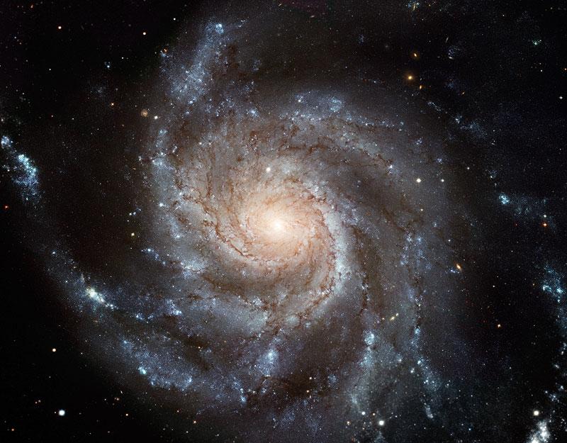NAVER まとめ超新星「回転花火銀河」の明るさがピークに【M101】