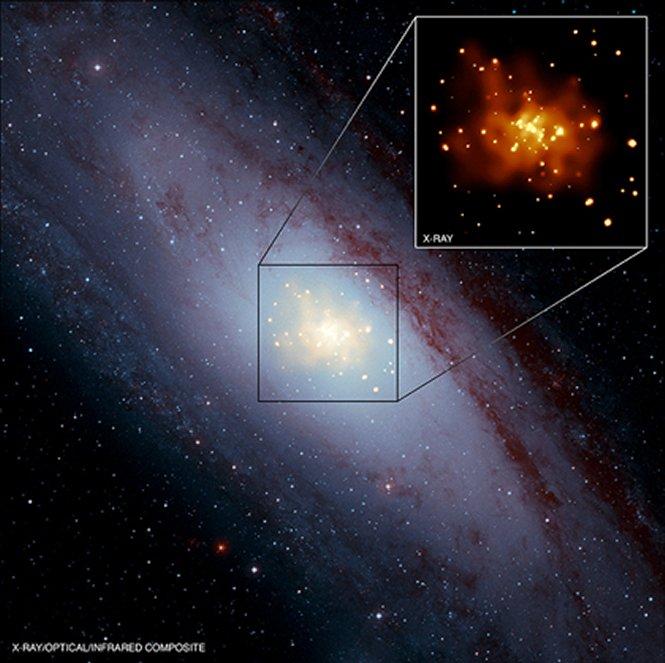 Ia型超新星の多くは白色矮星同士...
