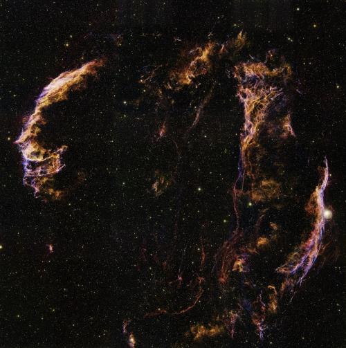 はくちょう座ループ 6億画素の画像に収まったはくちょう座ループの全容。6億画素のフルサイズ...