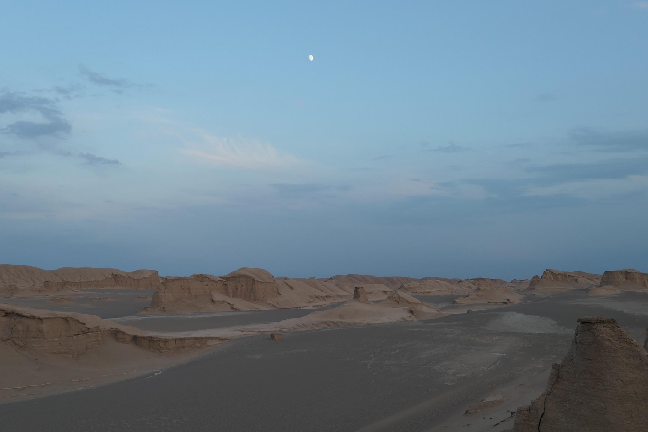 ルート砂漠の画像 p1_18
