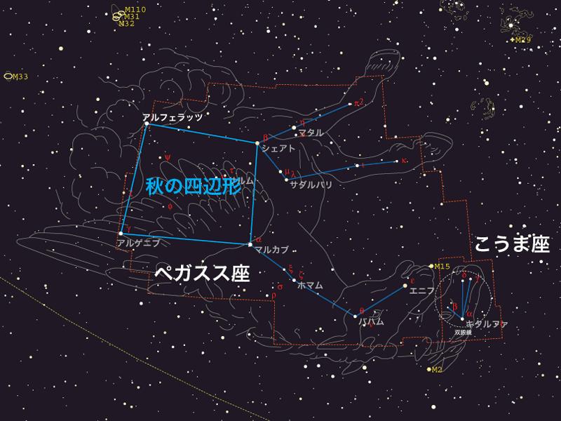 ペガスス座 〈ペガスス座〉を見つけるのはかんたんです。秋の夜空で、南空の高いところ... 【特集