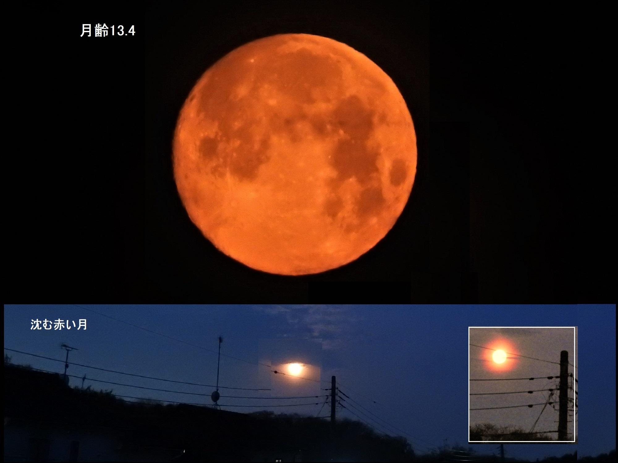 54748: 沈む赤い月 by エッチャン - 天体写真ギャラリー